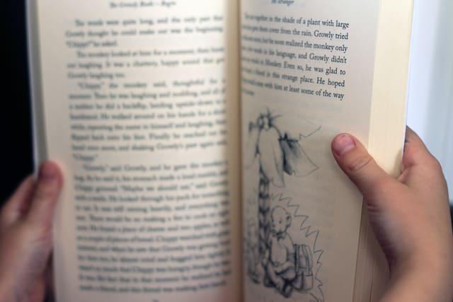 insidethebook